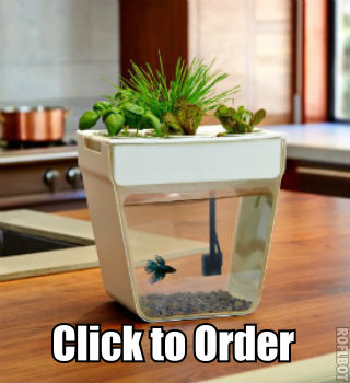 The only Betta tank that feeds plants
