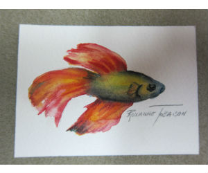 Betta Fish Art in Watercolor