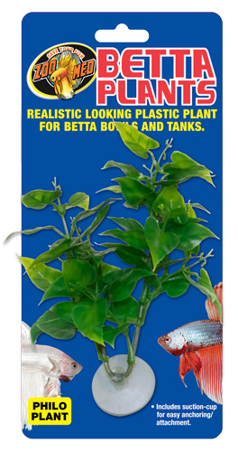 Zoo Med Philo Plants for Sale