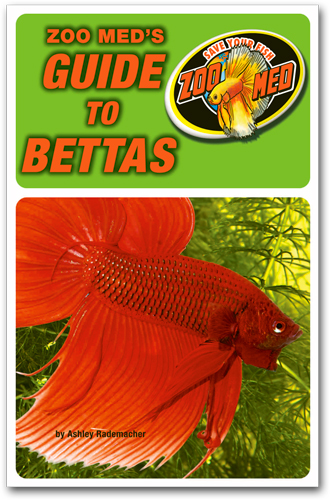 Zoo Med's Comprehensive Betta Care Book