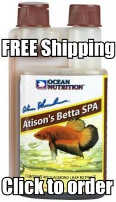 Atison's Betta Spa
