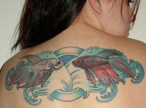 Betta Fish Tattoo 2