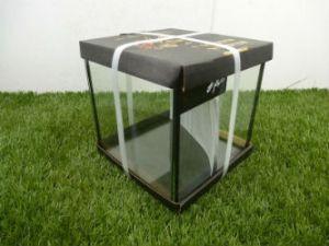 Betta Nano Rimless Cube Tank