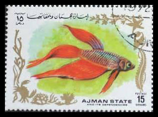 Stamps of Betta fish