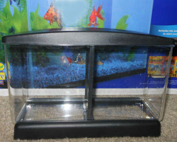 1/2 Gallon Divided Betta Tank