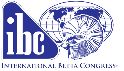 International Betta Congress organization founded in 1963