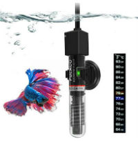 Popular Betta Products